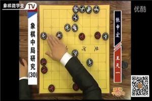 象棋中局研究(30)王天一vs张申宏