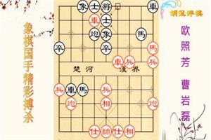 2009年五方杯中国象棋大赛:曹岩磊先胜欧照芳
