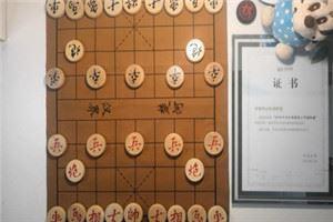 2013年全国象棋个人赛:郑惟桐先胜王天一