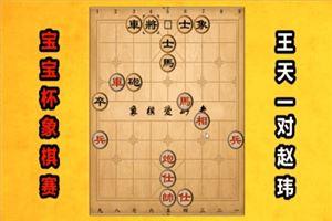 2018年宝宝杯象棋大师公开邀请赛:王天一先胜赵玮