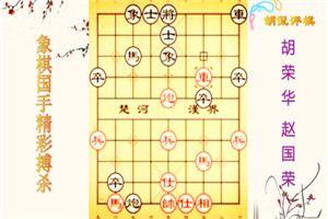 2001年翔龙杯象棋电视快棋赛:赵国荣先胜胡荣华