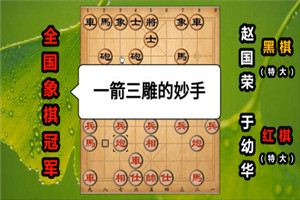 1988年象棋棋星邀请赛:于幼华先胜赵国荣