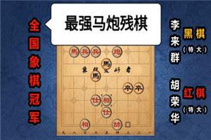 1991年全国象棋团体赛:胡荣华先胜李来群