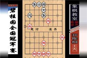 2017年碧桂园杯全国象棋冠军赛:王天一先和郑惟桐