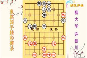 1999年全国象棋团体赛:许银川先胜柳大华