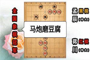 2014年杨官璘杯全国象棋公开赛:蒋川先胜孟辰