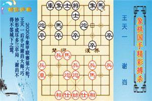2020年全国象棋甲级联赛:谢岿先负王天一
