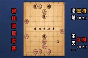 2019年碧桂园杯全国象棋冠军赛:王天一先先胜谢靖