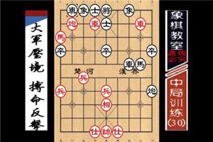 """""""职业棋手""""中局训练:大军压境、搏命反击(30)"""