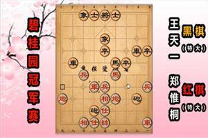 2019年碧桂园杯全国象棋冠军赛:郑惟桐先负王天一
