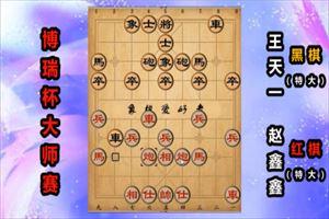 2019年博瑞杯全国象棋大师公开赛:赵鑫鑫先和王天一