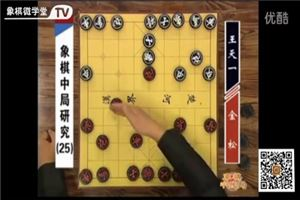 象棋中局研究:金松vs王天一