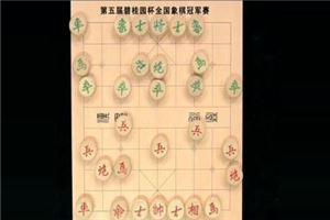 2016年碧桂园杯全国象棋冠军赛:洪智先负吕钦