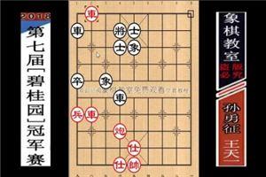 2018年碧桂园杯全国象棋冠军赛:王天一先胜孙勇征