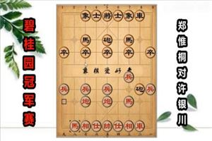 2018年碧桂园杯全国象棋冠军赛:郑惟桐先胜许银川