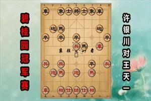 2017年碧桂园杯全国象棋冠军赛:许银川先负王天一