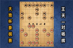 2019年大地杯象棋公开赛:王天一先胜杨辉