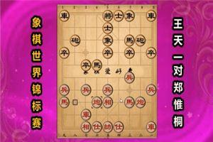 2017年世界象棋锦标赛:王天一先和郑惟桐