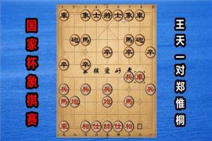 2018年国家杯象棋大赛:王天一先和郑惟桐