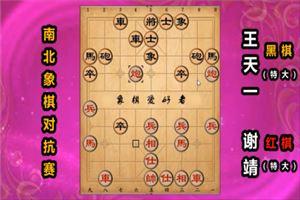 2019年全国象棋冠军南北对抗赛:谢靖先胜王天一