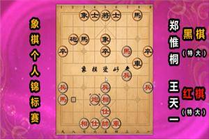 2019年全国象棋个人赛:王天一先胜郑惟桐