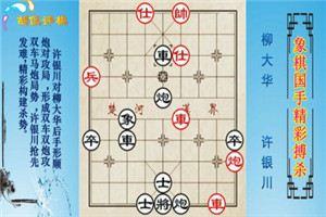 1993年广东电视象棋快棋赛:柳大华先负许银川