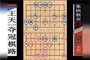 2012年全国象棋个人赛:王天一先胜张欣