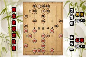 2019年全国象棋冠军南北对抗赛:王天一先负郑惟桐