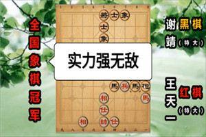 2014年全国象棋冠军邀请赛:王天一先胜谢靖