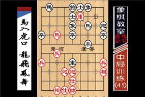 """""""职业棋手""""中局训练:马入虎口、龙飞凤舞(45)"""