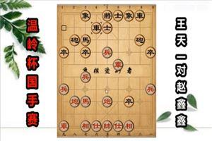 2018年温岭杯全国象棋国手赛:王天一先和赵鑫鑫